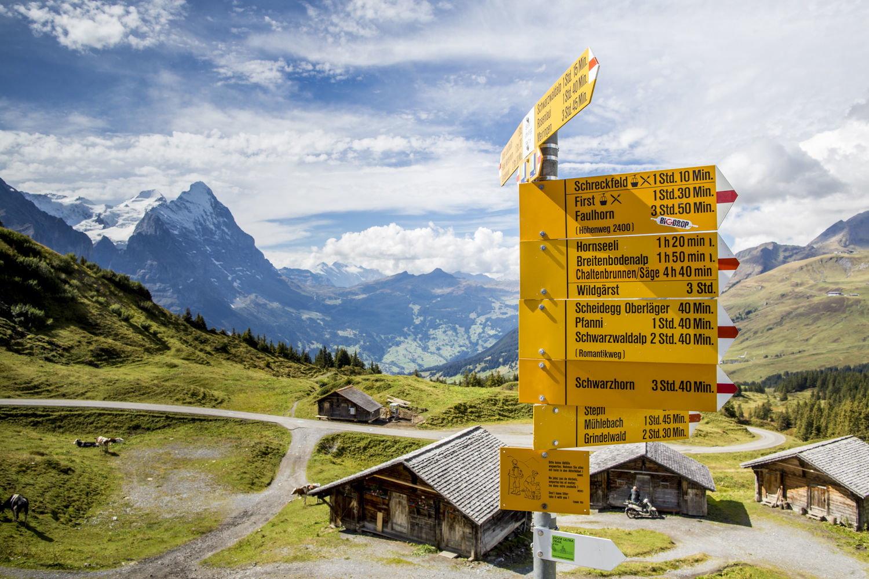 Wandern Ausflug Grosse Scheidegg Interlaken